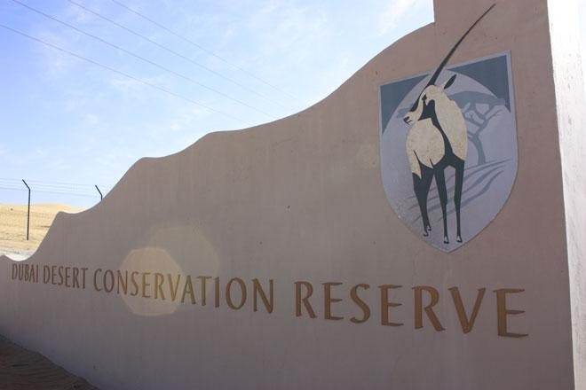 Platinum Heritage - Desert Safari Dubai - Breakfast with a Bedouin - Dubai Desert Conservation Reserve