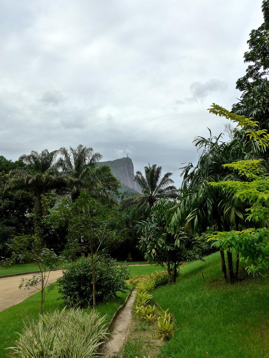 Botanical Garden Rio de Janeiro - Jardim Botanico do RIo de Janeiro - Christ the Redeemer