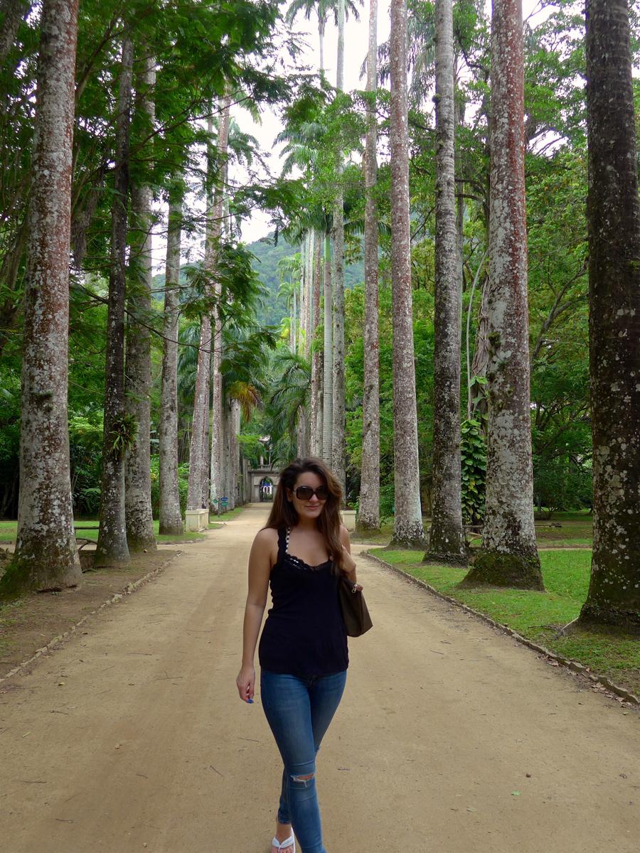 Botanical Garden Rio de Janeiro - Jardim Botanico do RIo de Janeiro - palm lined path