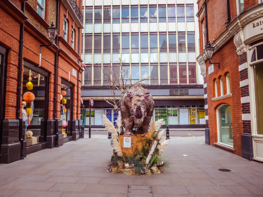 Chelsea in Bloom 2017 - Floral Safari