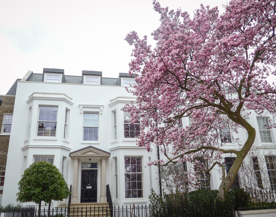 Hornton-Street-Kensington-Blossom-London