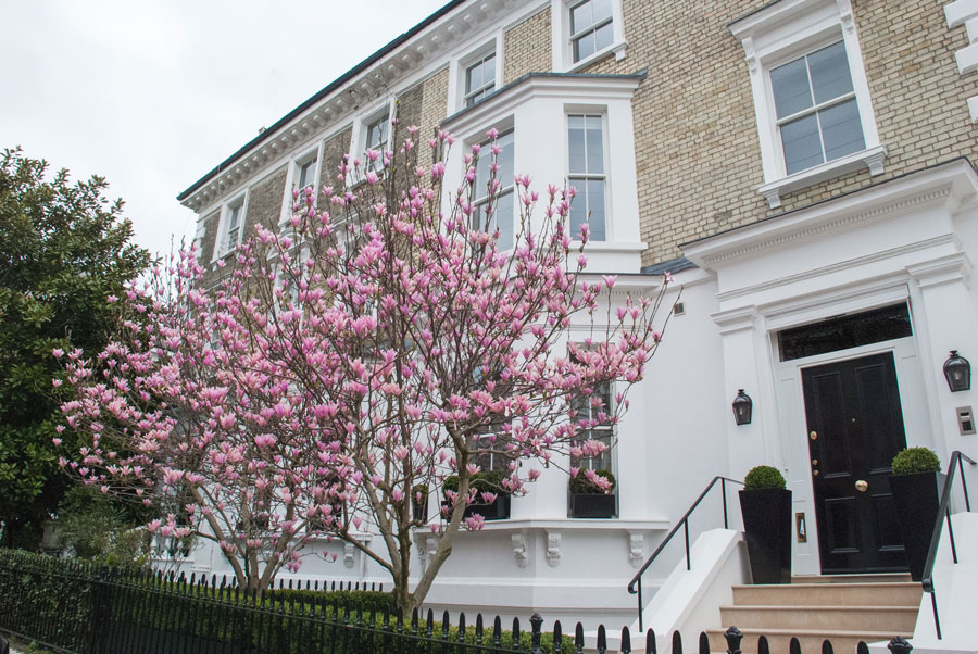 Phillimore-Gardens-Kensington-Blossom-London