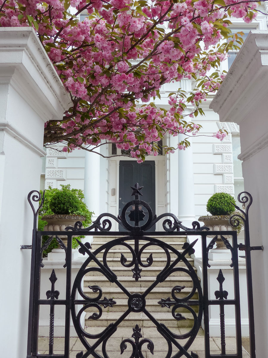 The-Boltons-Kensington-Blossom-London