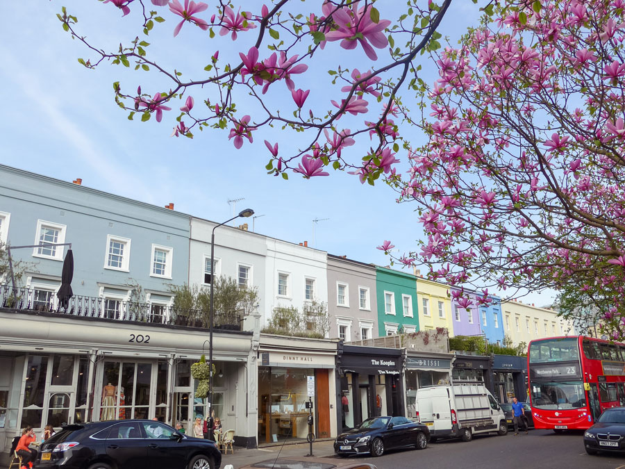 Westbourne-Grove-Notting-Hill-London-Magnolia-Blossom