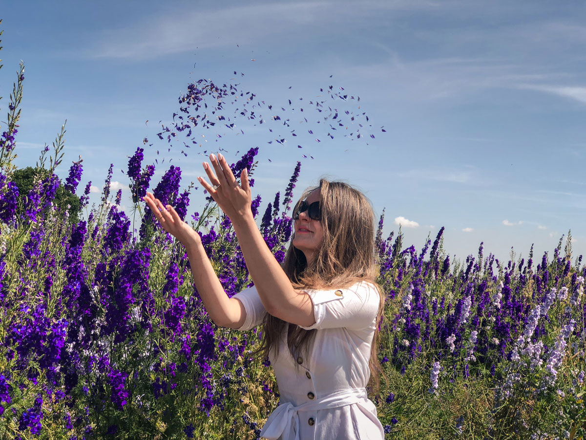 Cotswold Flower Fields - The Real Flower Petal Confetti Company Delphiniums - Confetti throw - Caught by the wind