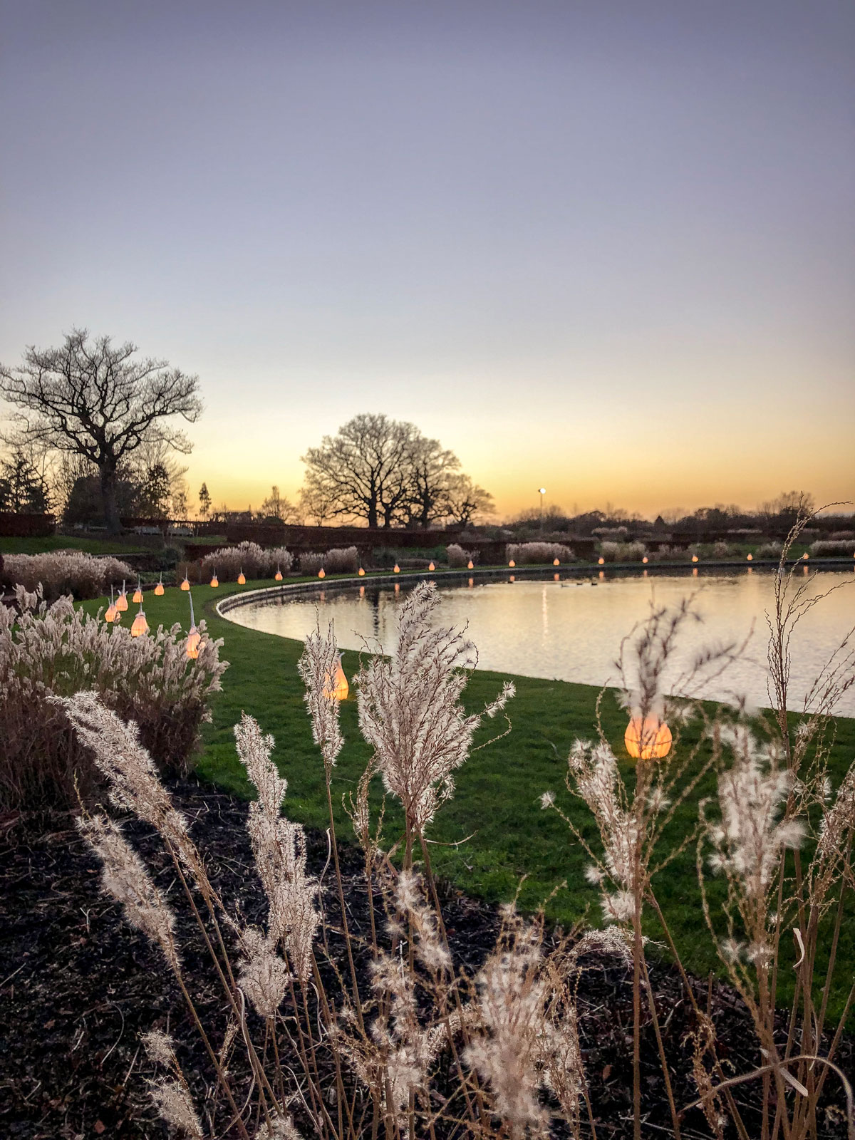 RHS Wisley Glow 2018 Lake and lantern walk at sunset