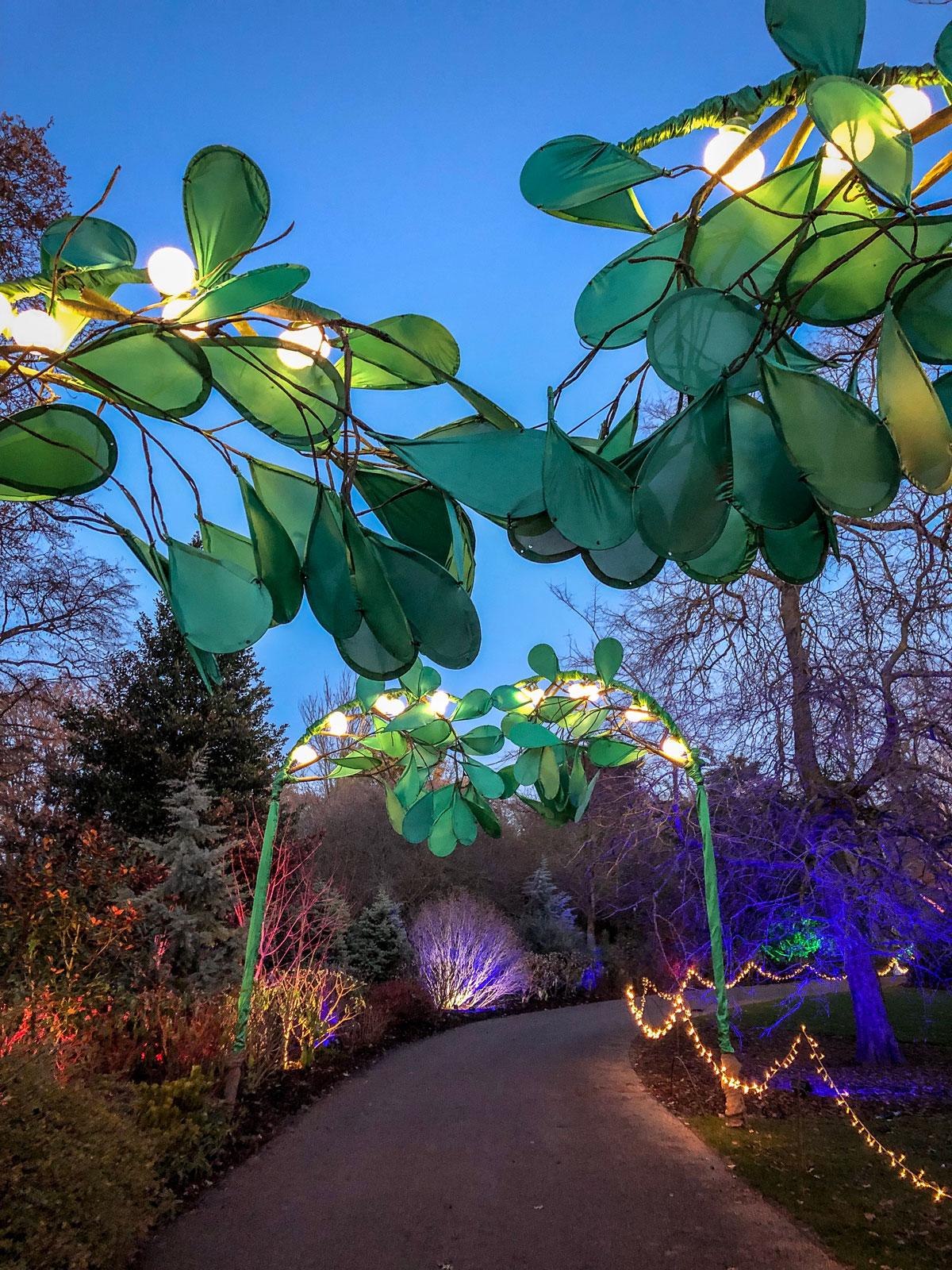 RHS Wisley Glow 2018 Mistletoe arch. Royal Horticultural Society.
