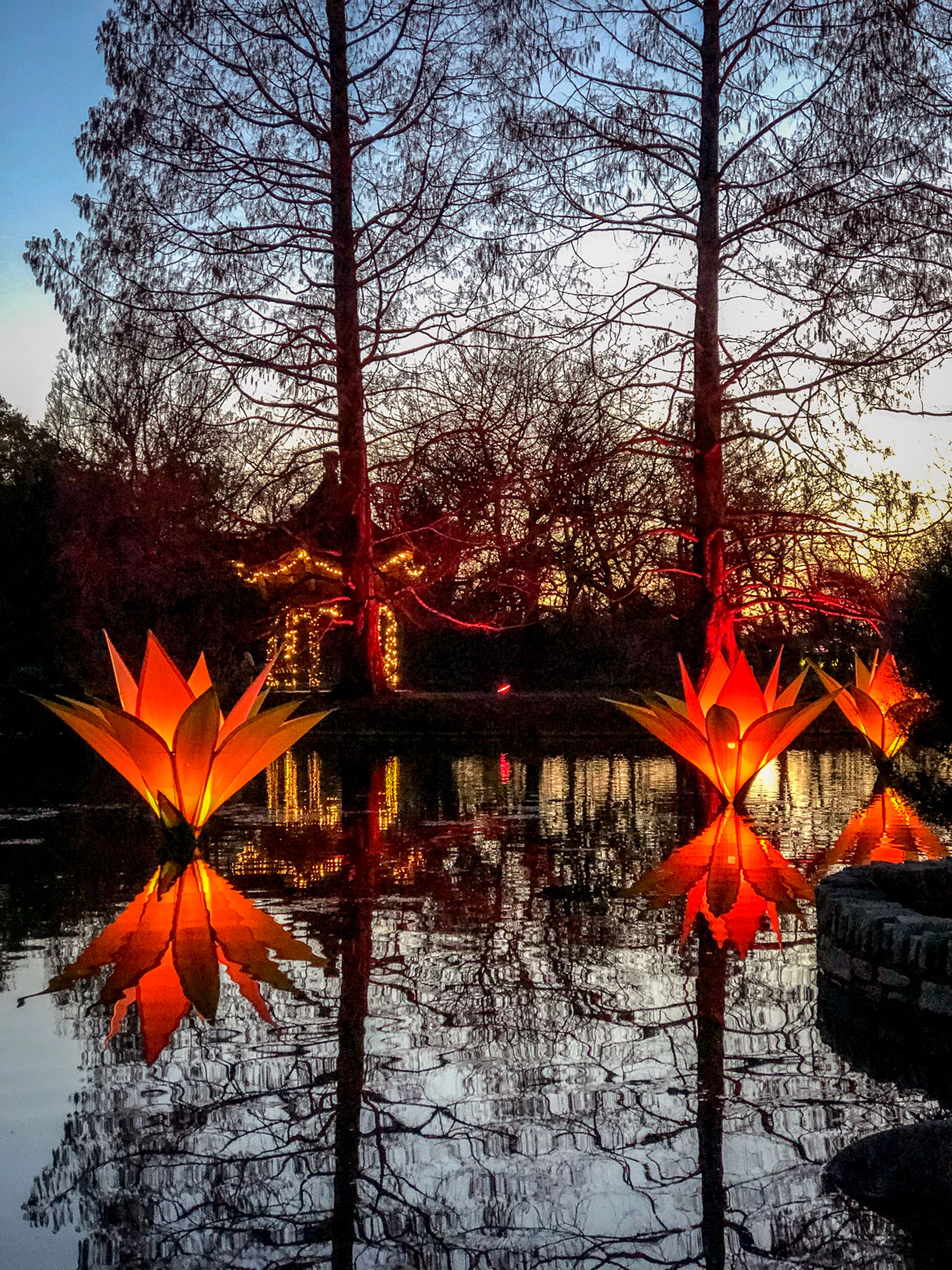 RHS Wisley Glow 2018 Reflections on lake and Oriental pagoda