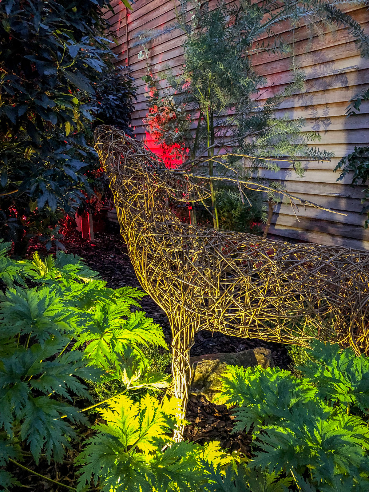 RHS Wisley Glow 2018 reindeer in the glasshouse. Christmas at the Royal Horticultural Society's Wisley.