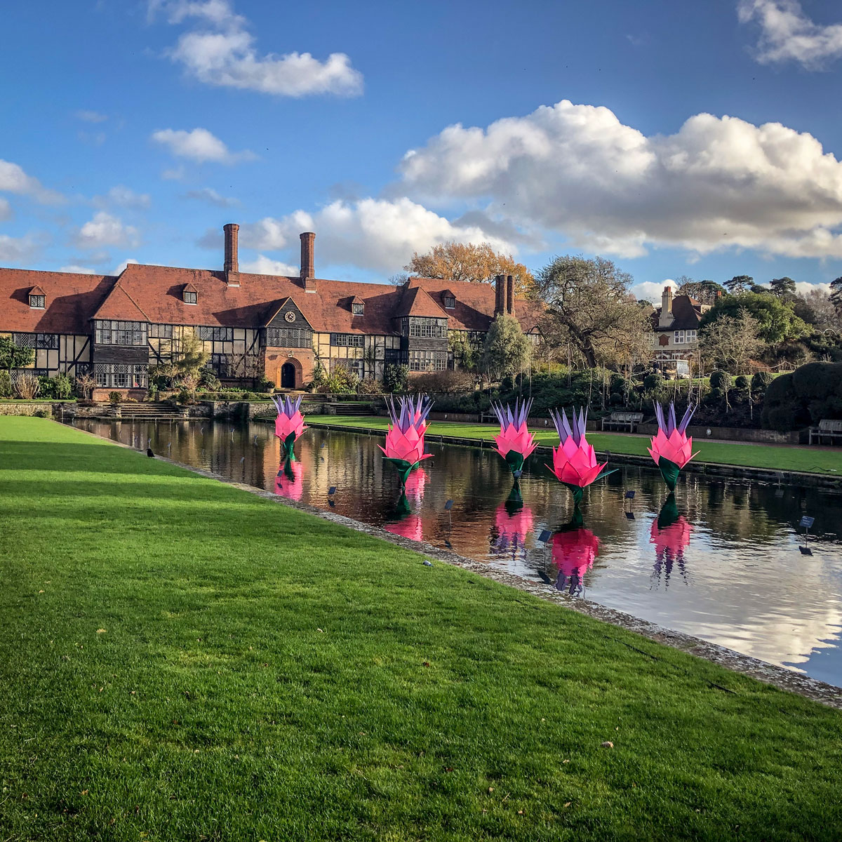 The Royal Horticultural Society's Wisley Glow 2018. RHS Wisley laboratory and Jellicoe canal with water lilies