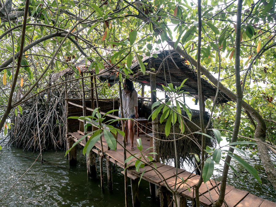 Cinnamon Island Sri Lanka The River House Boat trip