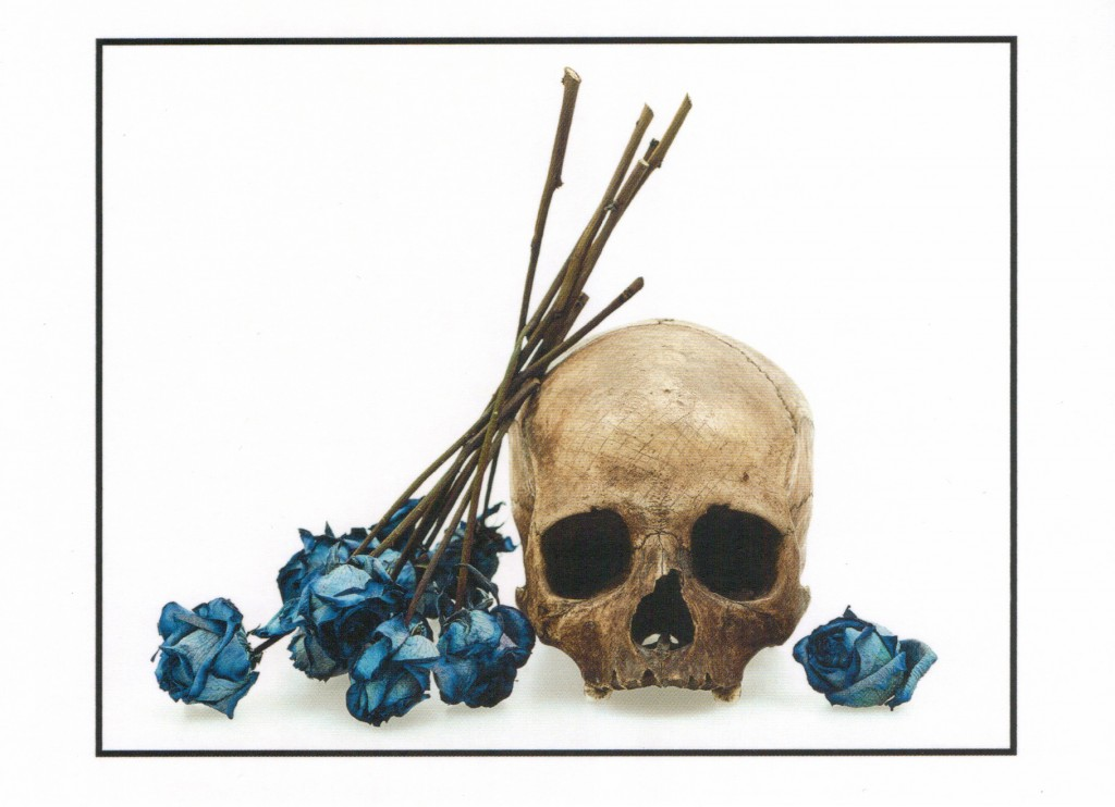 Human Skull and Blue Roses. David Bailey, 2008. © David Bailey