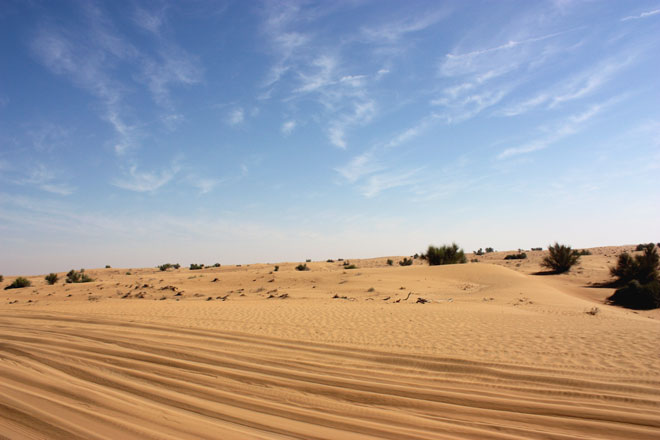 Platinum Heritage - Desert Safari Dubai - Breakfast with a Bedouin - Desert tracks and dunes