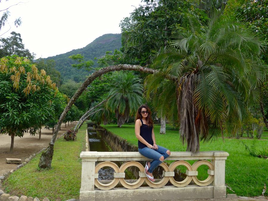 Botanical Garden Rio de Janeiro - Jardim Botanico do RIo de Janeiro