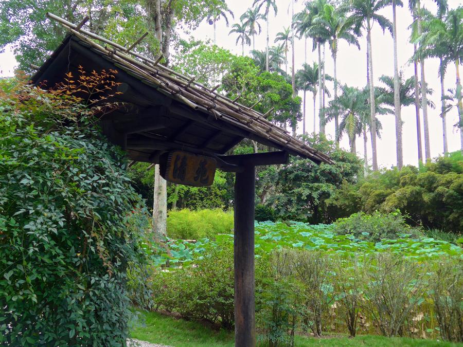 Botanical Garden Rio de Janeiro - Jardim Botanico do RIo de Janeiro - Japanese Garden