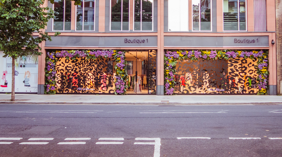 Chelsea in Bloom 2017 - Floral Safari