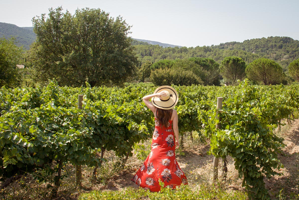 Provence-Villages-South-of-France.-Provence-Luberon.Domaine-de-marie-vineyard.-french-vineyards