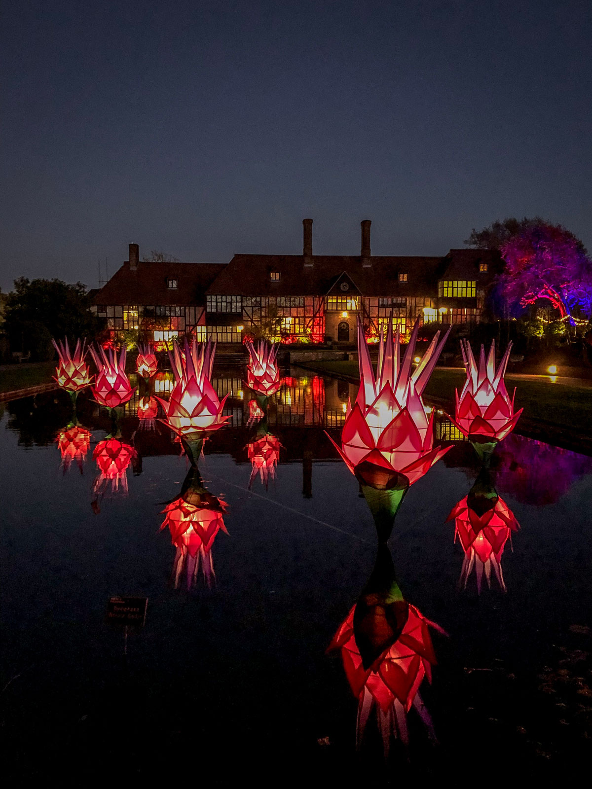RHS Wisley Glow 2018 Laboratory Building and reflections in Jellicoe Canal.